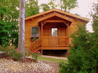 Romantic getaway - Ohio vacation rentals