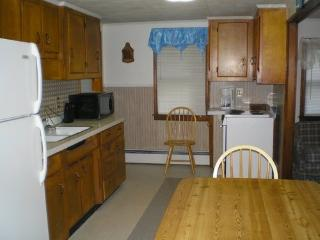 Enjoy the Poconos and all its splendor - Lehighton vacation rentals