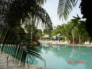 Welcome to the Paradise - Naples vacation rentals