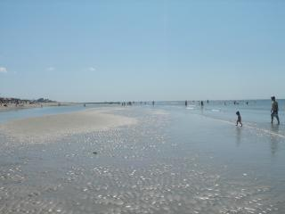 CAPE COD VACATION PARADISE - West Dennis vacation rentals