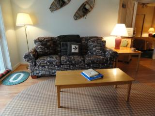 Immaculate 1 Bedroom Condo w/View Pemi and S. Peak - White Mountains vacation rentals