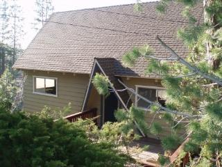 Lake Arrowhead forest views - Lake Arrowhead vacation rentals