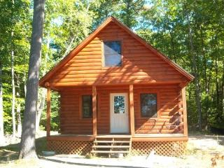 Waterfront cabin on Tacoma Lakes - Kennebec vacation rentals