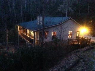 Cabin Fever - Topton vacation rentals