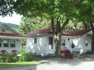 5 Family Cottages Near Penn State & Woodward Camp - Allegheny Mountains vacation rentals