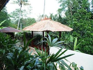 Villa Indah - Magical valley views and privacy - Ubud vacation rentals