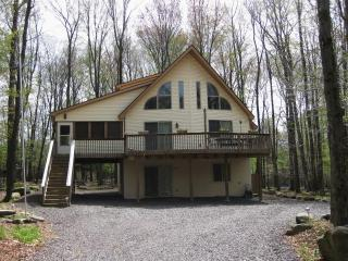 4 BR w/ Jacuzzi, Poker Table, accom. 12 - Lake Ariel vacation rentals