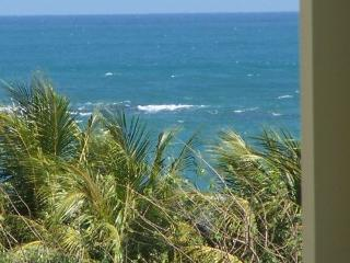 Beach Penthouse free night w/all fees included - Puerto Rico vacation rentals