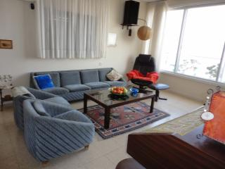 apartment overlooking the Sea of Galilee - Tiberias vacation rentals