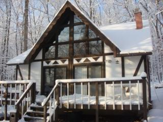 4 Br 2 Ba Masthope Pocono Mountain retreat - Lackawaxen vacation rentals