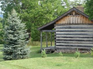 Good Time Farm Log Cabin Escape - Hillsboro vacation rentals