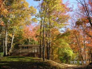 VACATION IN THE MOUNTAINS - Marshall vacation rentals