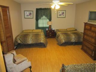 Perfect for Large families,WI-FI,7 TVs,BBQ,I-85 - Atlanta Metro Area vacation rentals