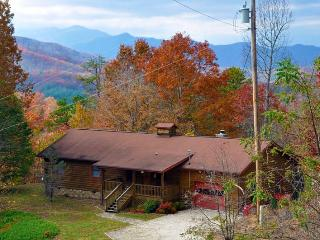 Big Bear Retreat - Bryson City vacation rentals