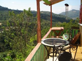 Living the Peaceful, Costa Rican Rural Life - Central Valley vacation rentals