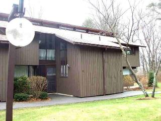 2 Bedroom+ Condo in Scenic, Rustic Manchester Ctr - Stratton and Bromley Ski Areas vacation rentals