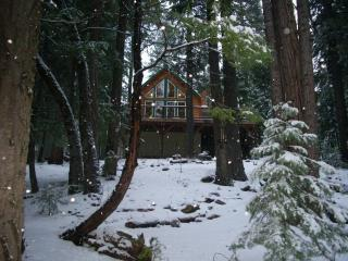 Adorable Creekside Cabin near Mount Lassen - Shasta Cascade vacation rentals