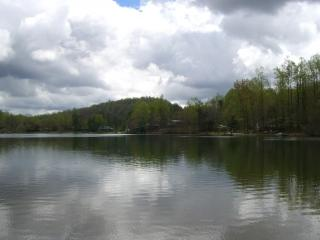 Lake Sheila Cabin - Saluda vacation rentals