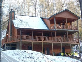 Riverfront - Wi/Fi - Hot tub - Kids stay free! - North Georgia Mountains vacation rentals