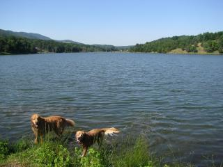 Private & Romantic Pet Friendly Cabin in WV - West Virginia vacation rentals