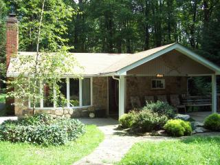 Seven Springs/Hidden Valley Beautiful 3 Bedroom - Seven Springs vacation rentals