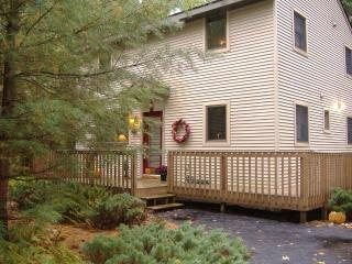 vacation rental home for winter/summer sports - Northeast Michigan vacation rentals