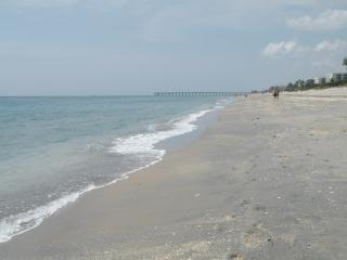 Enjoy the sun and surf in world-famous Palm Beach - Palm Beach vacation rentals