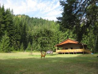 St Joe River Cabin Idaho - Saint Maries vacation rentals