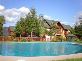 Charming House, Dowtown Pucon, Southern Chile - Araucania Region vacation rentals