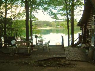 Lakefront Cottage on Beautiful Dixon Lake - Northeast Michigan vacation rentals