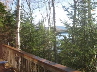 Lakefront private cottage - Oquossoc vacation rentals