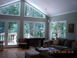 PIC PERFECT! BUSINESS/VACATION! ALL SEASONS! - Atlanta vacation rentals