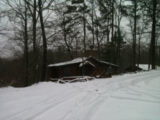 Mountain Cottage near Carters Lake - North Georgia Mountains vacation rentals
