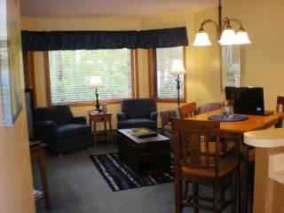 Great Condo-Priced Right, Last Minute Bookings - Door County vacation rentals