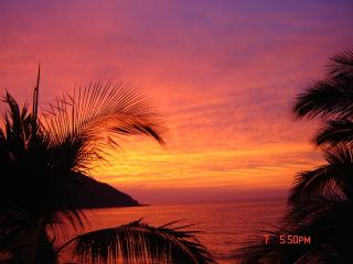 BEACH FRONT CONDO---GOLDEN ZONE AREA - Mexican Riviera-Pacific Coast vacation rentals