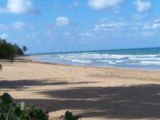 ***Beautiful Villa in Rio Mar*** - Rio Grande vacation rentals