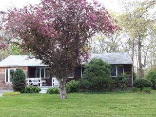 Charming Getaway near Shinnecock Bay - Hamptons vacation rentals