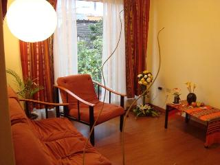 Beautiful condo in the heart of Cuenca - Cuenca vacation rentals
