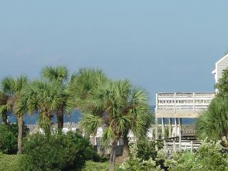 Best deal on the cape, pet freindly/pets stay free - Port Saint Joe vacation rentals