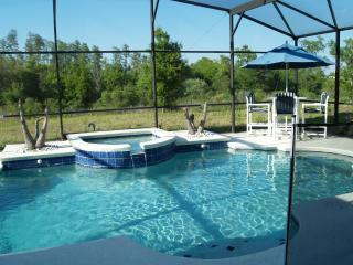 Disney Area,6bdrms sleep 18, 15 min to Disney - Disney vacation rentals