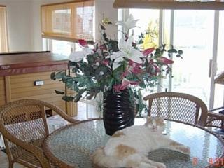 Dreamy Paradise Vacation overlooking Hampton Beach - New Hampshire Seacoast vacation rentals