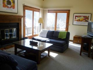 LOCATION! ON SLOPE, HOLIDAY VALLEY,Air Conditioned - Ellicottville vacation rentals