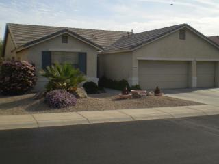 House in beautiful AZ Traditions gated community - Surprise vacation rentals