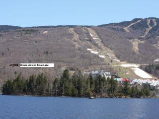 Tremblant - Luxury 4 Bedroom House $300 Night - Quebec vacation rentals