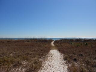 At home ON THE BEACH! - Carrabelle vacation rentals