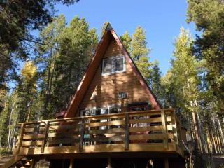 Secluded Chalet @ Fawn Trail Junction - Evergreen vacation rentals
