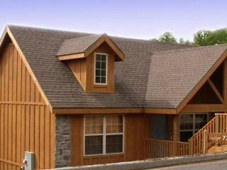 Lakefront Luxury Cabin, Great Fun - Reeds Spring vacation rentals