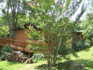 Turtledove Mountain Cabin - Luray vacation rentals