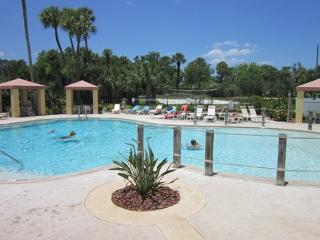 Lake View Canopy Walk! ( Unit Id 84 ) - Ormond Beach vacation rentals