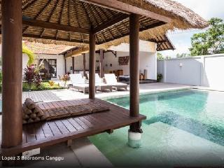 Tropical 3 bedrooms Villa Lopez Canggu - Seminyak vacation rentals
